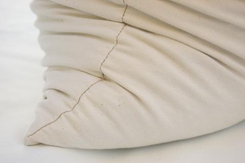 Buckwheat Pillow Case