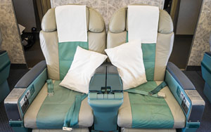 buckwheat travel pillows