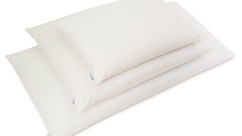 Pillow Filling Types Explained: What's Best for Me?